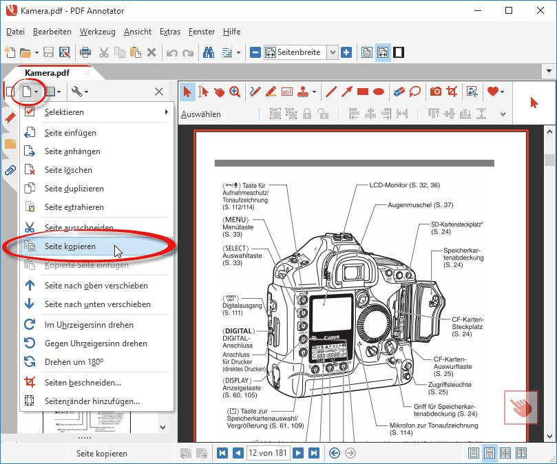 Seite aus PDF kopieren