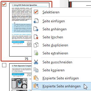 Kopierte Seiten einfügen oder anhängen