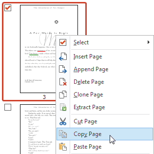 Copier et coller des pages