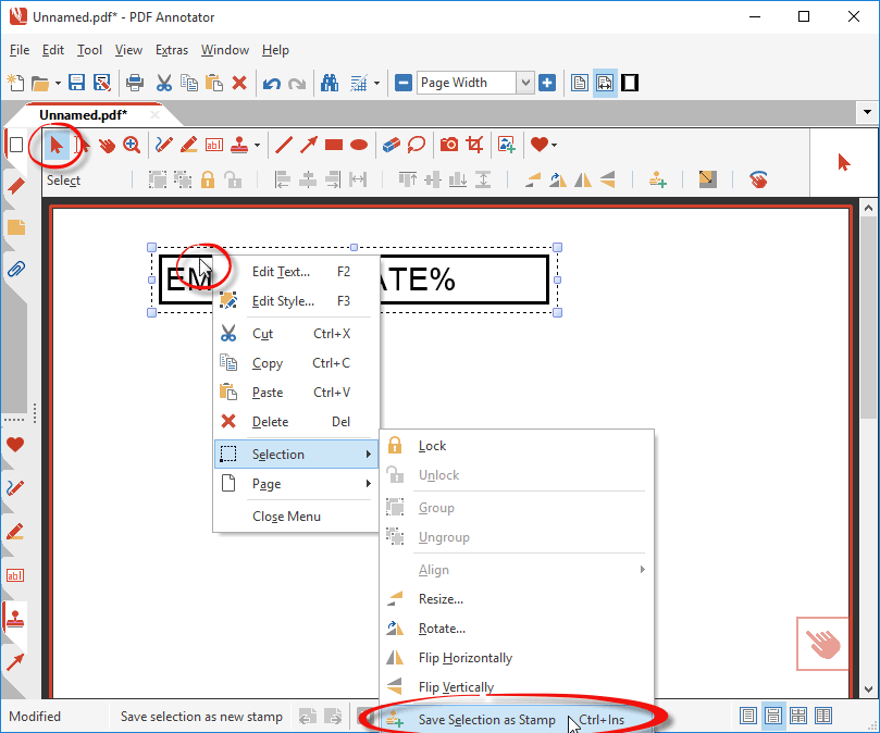 cant enter date on pdf