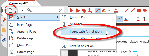 Select only pages with annotations