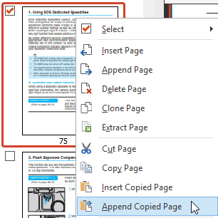 Insert or Append Copied Pages